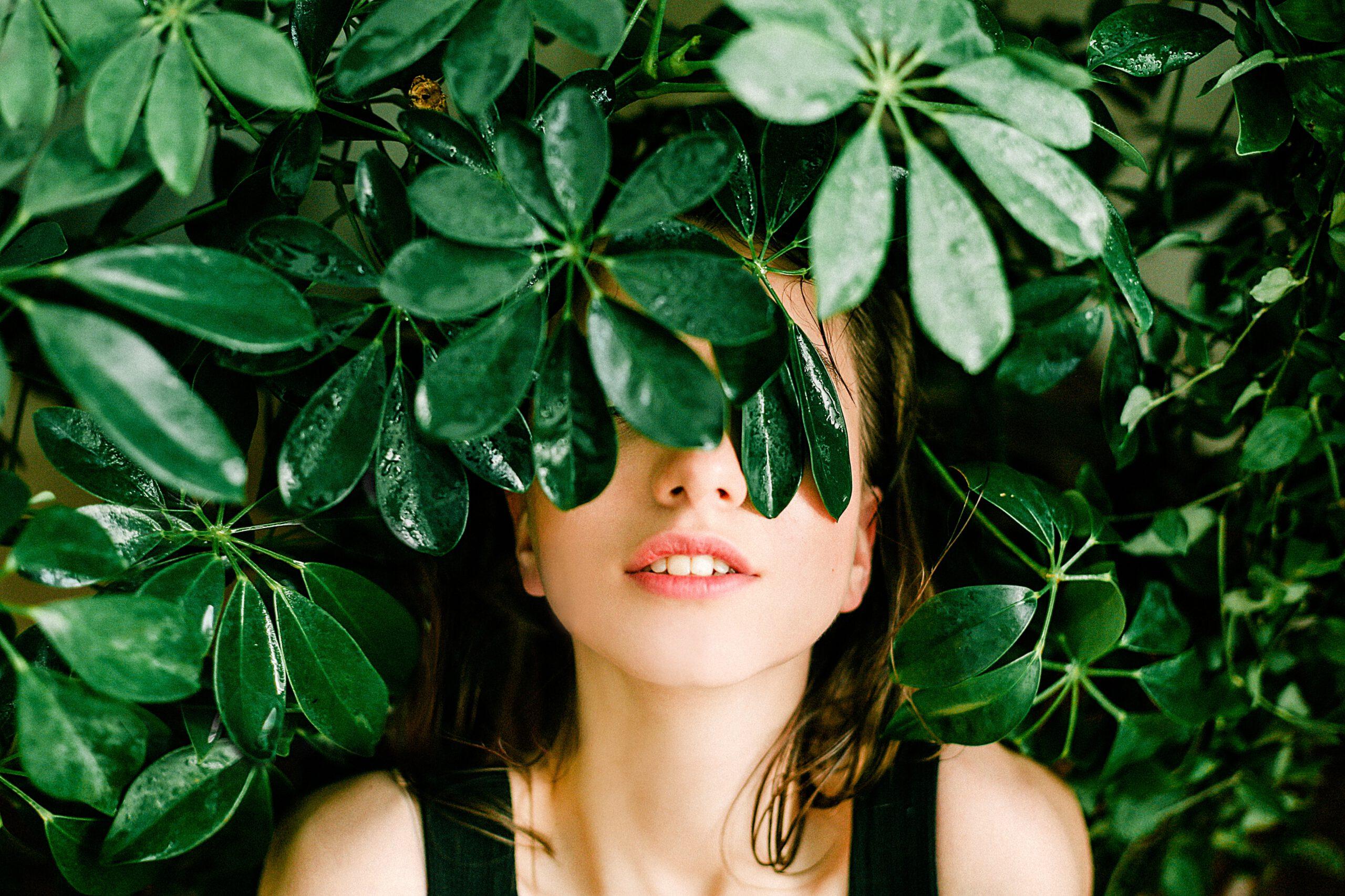Nieuwe planten nodig in je tuin, haagplanten zijn een goede aanvulling.