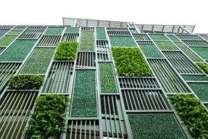 groene aanbesteding